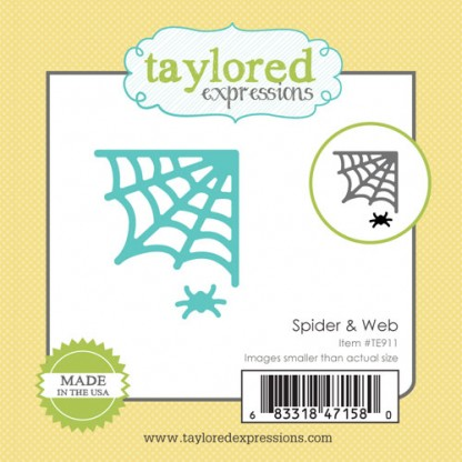 Taylored Expressions- Little Bits - Spider & Web