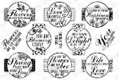 ###Whimsy Stamps - Lovely Spring Sliders 2 - Sentiments Collection