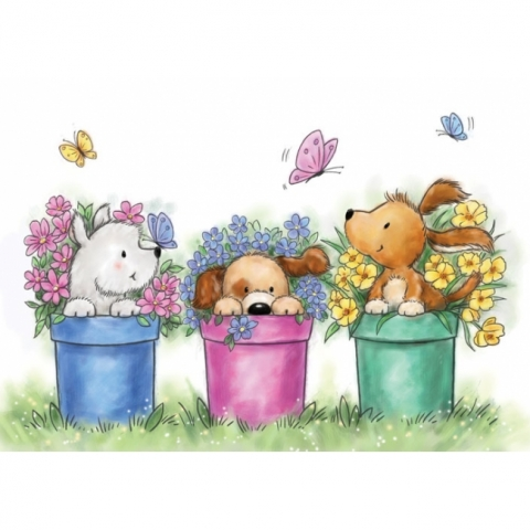 Wild Rose - Dogs in Pots
