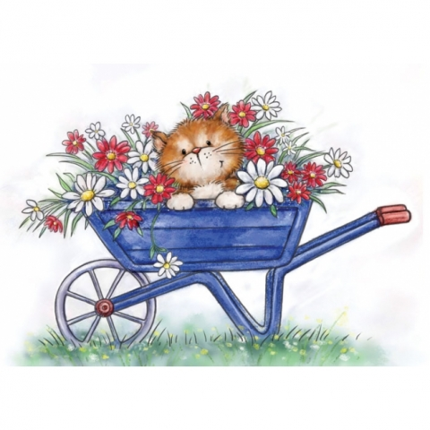 *NEW* - Wild Rose - Cat in Wheelbarrow