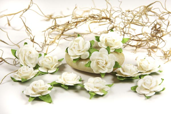 Fairytale Roses - French White